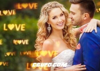VIP专享视频素材:40个浪漫唯美爱恋光斑炫光叠加特效视频动画婚礼婚庆高清视频素材