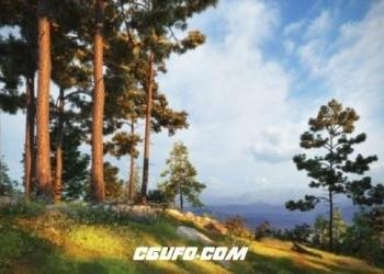 VIP专享北半球欧美树木丛林3D模型包(C4D/MAX/FBX/OBJ格式)