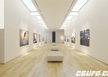 年费VIP专享艺术博物馆画廊展示动画AE模版