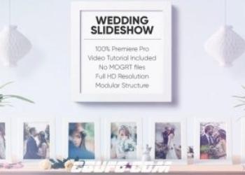 年费VIP专享12189婚礼爱情相册展示动画PR模版,Wedding Slideshow