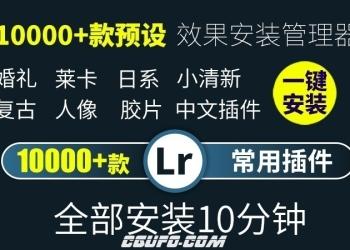 lr预设插件 lightroom调色胶片预设+插件 日系小清新 一键安装