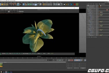 植物树叶C4D Octane渲染合成教程 Cinema 4D and Octane – Texturing and Rendering a Plant Scene Tutorial
