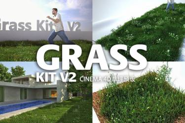 C4D草坪生成器预设 Grass Kit v2 for C4D and Vray