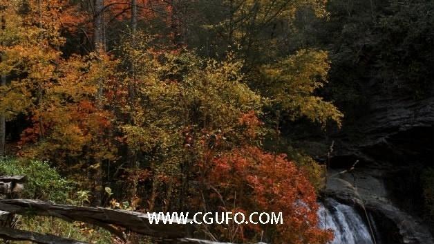 1560瀑布树林自然风景高清实拍视频素材