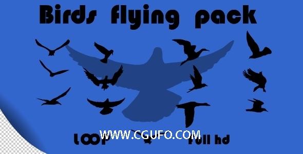 112-13组飞行的小鸟动画高清视频素材,Birds Flying Pack