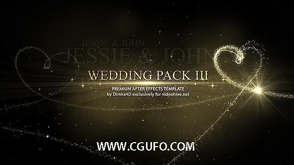6011婚礼相册粒子包装动画AE模版,Wedding III