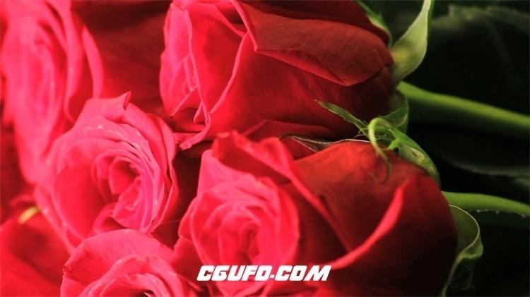 2174-新鲜红玫瑰花束摆放旋转展示浪漫情人节场景高清背景视频实拍