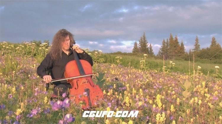 2182-音乐大师认真弹奏乐器唯美花田中大提琴演奏意境高清视频拍摄
