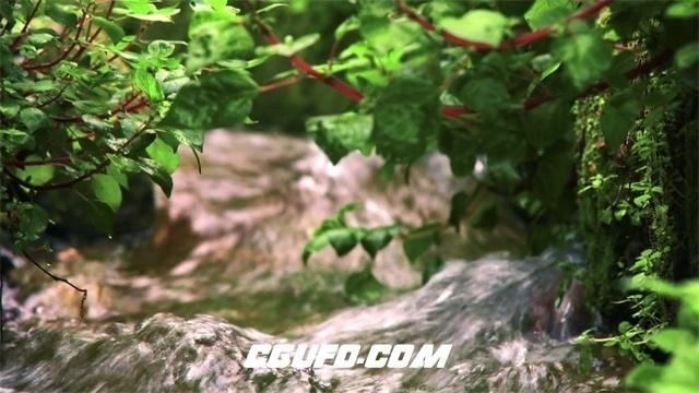 2300清澈水流绿草茂盛生长镜头变焦特写自然景色高清视频拍摄