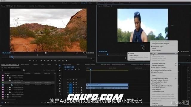 第110期中文字幕翻译教程《Premiere Pro CC 2017新功能训练视频教程》