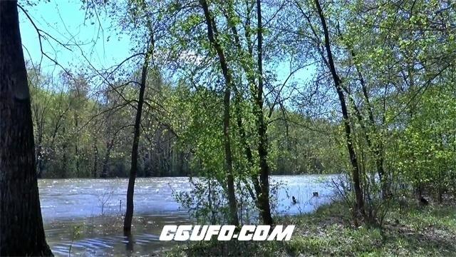 2810-春天万物生长万物复苏森林公园河流绿树成荫植物生长高清实拍视频素材