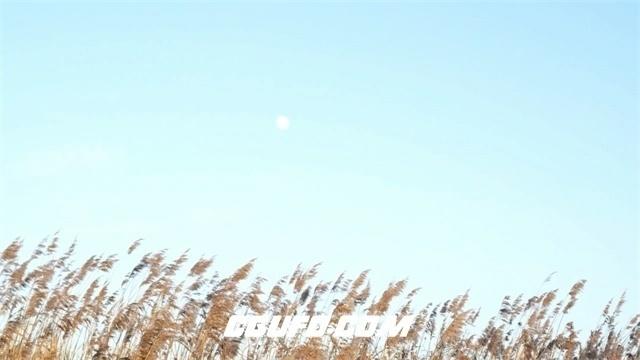 2880-白天的月亮高清实拍视频素材
