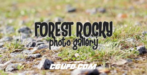 2523森林爱情相册动画AE模版,Forest Rocky Photo Gallery