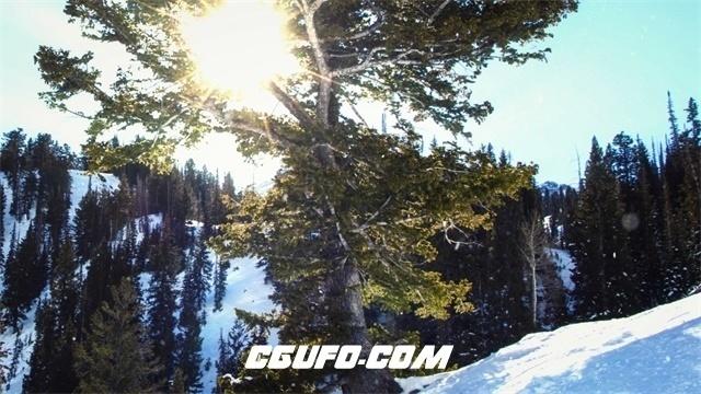 3300-4K晴朗冬季阳光照射穿透树木雪地唯美下雪场景镜头高清实拍视频素材