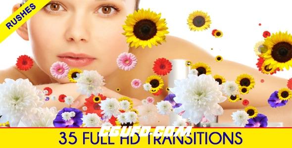 3106常用的转场过渡动画高清视频素材带Alpha通道,Editors Transition Pack