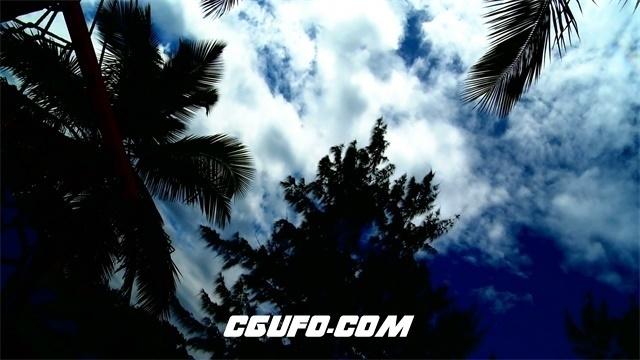 3393白云蓝天和棕榈树高清实拍视频素材