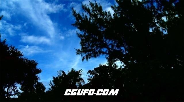 3394傍晚蓝天白云树木高清实拍视频素材
