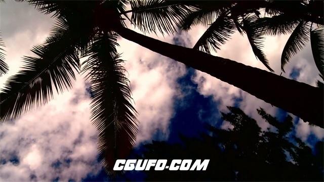 3424海滩上的日落高清实拍视频素材