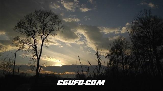 3555日落森林美景高清实拍视频素材